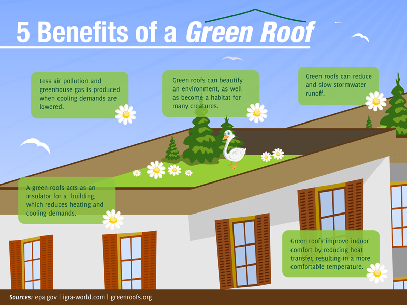 20-Colleges-Embracing-the-Green-Roof-Trend1