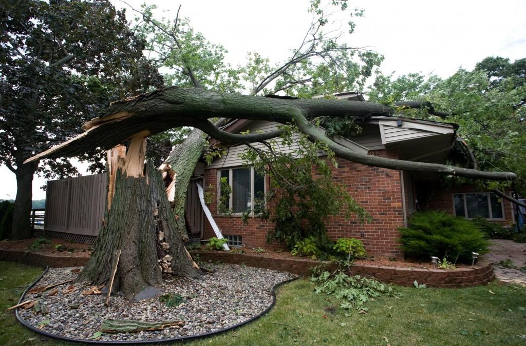 storm-damage-jacksonville